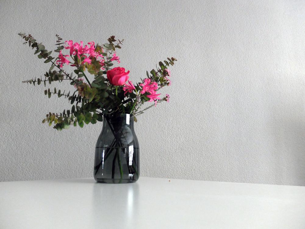 Die schönste Vase | Julie Fahrenheit
