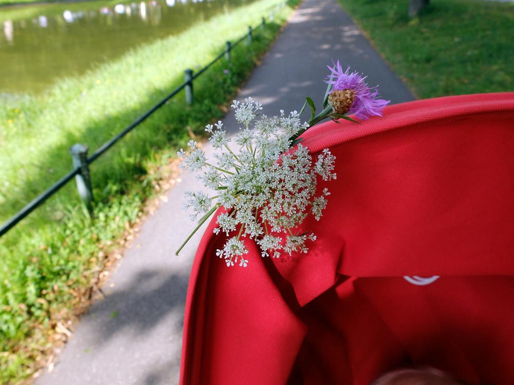 Blumen für den Kinderwagen | Julie Fahrenheit
